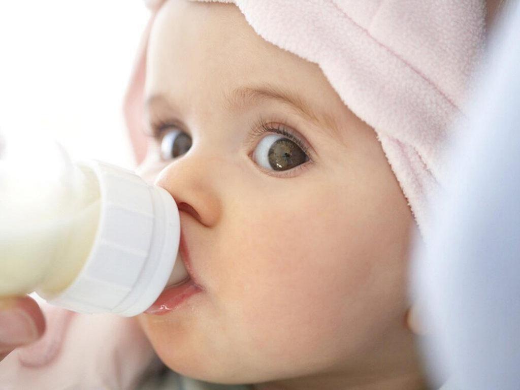 Bancuh Susu